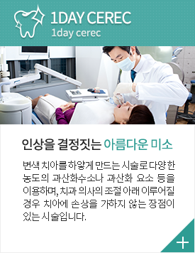 1DAY CEREC